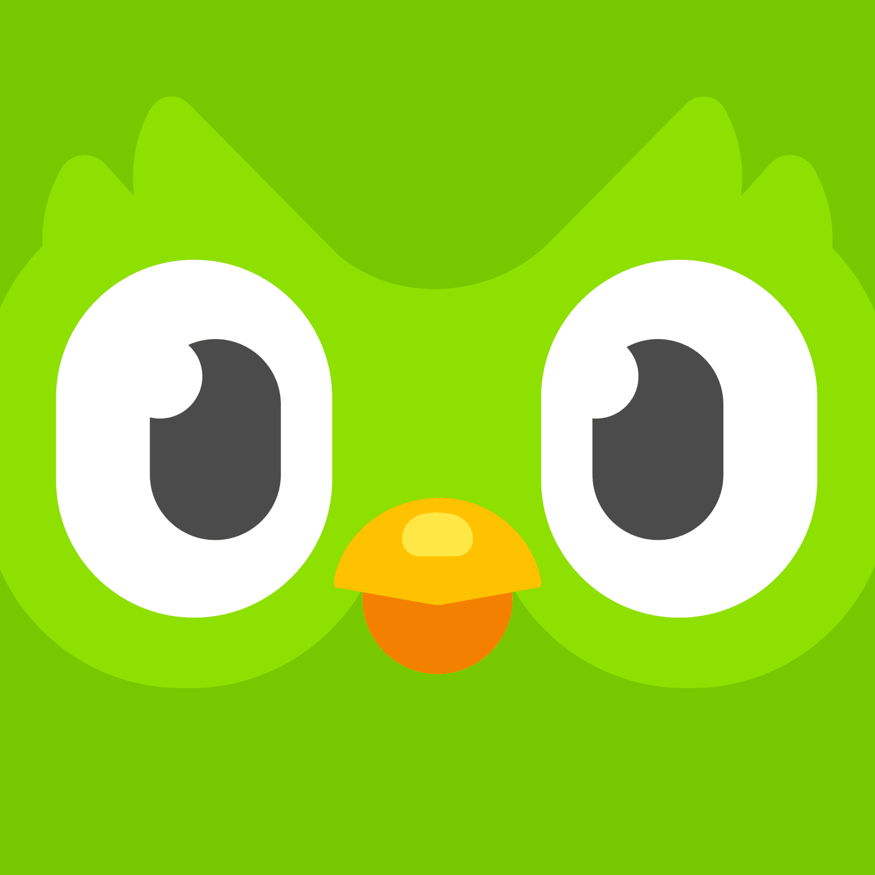 Practice language skills at home with Duolingo