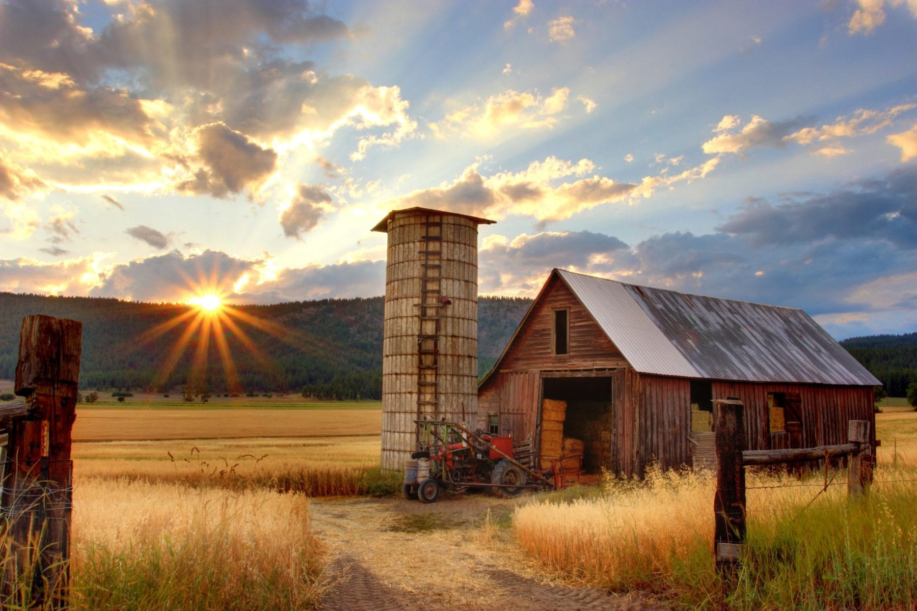 Spend the day on the farm without leaving home